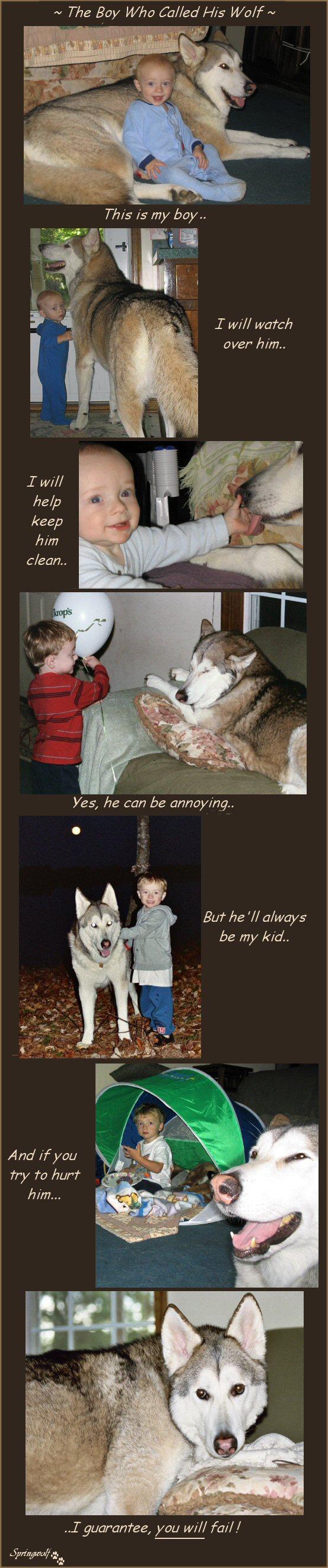Merlin's Story