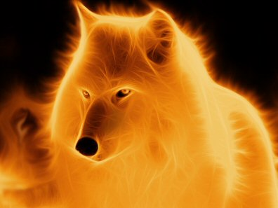 Arctic Wolf Fire