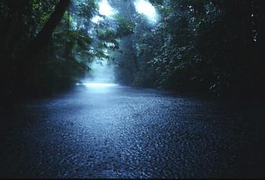 River, Malaysia Greenpeace / Takeshi Mizukoshi