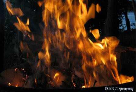 Bonfire Spiritby Springwolf