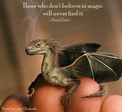Believe In Magik