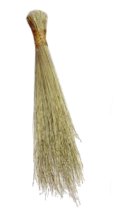Swazi Broom