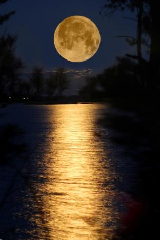 The Full Moon In The Southern Hemisphere | Springwolf
