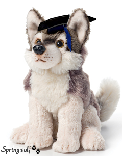 graduating wolf