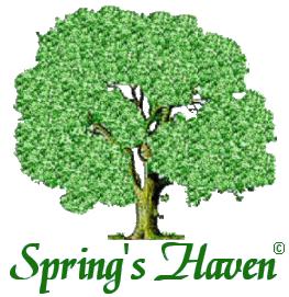 Spring's Haven