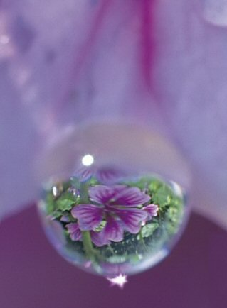 spiritualwater