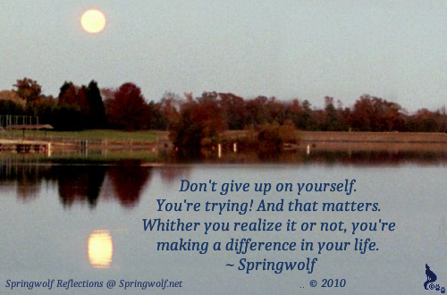 Don't Give Up On Yourself ~ © Springwolf 🐾 2010 ~