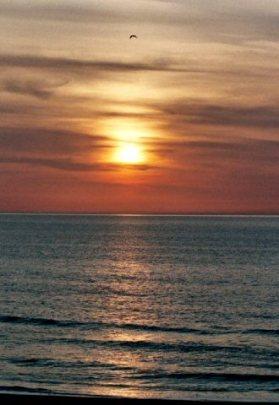 Virginia Sunrise by Springwolf 🐾 © 2007