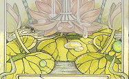 ace-shields
