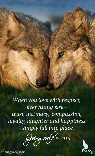 When you love with respect, everything else - trust, intimacy, compassion, loyalty, laughter and happiness - simply fall into place.