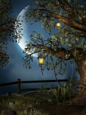 neo-Pagan | Springwolf Reflections